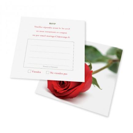 Carton réponse rose rayon