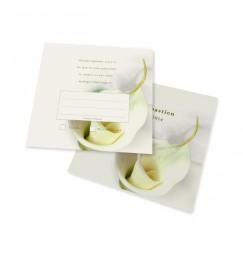Carton réponse calla lily