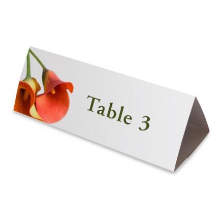 Nom table arum