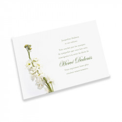 White flower condolences thank you cards